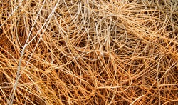 Pile of old small ropes texture background, orange rope or string tangled texture. (For abstract background uses)