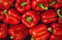 Pile of paprika peppers as background, closeup