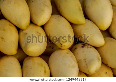 pile of potatoes, digital photo picture as a background