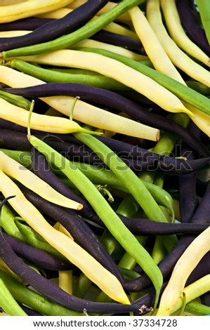 Pile of purple yellow and green string beans