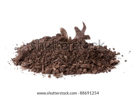Pile of real compost with dried leaf sticking out isolated on a white background
