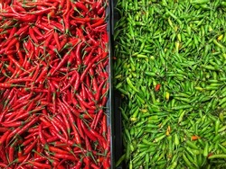 Pile of red and green chillies in separated container.