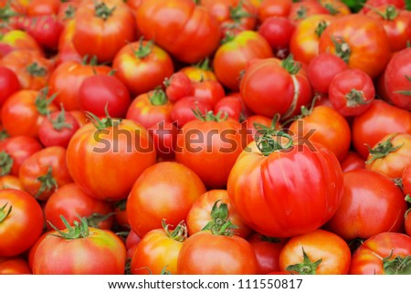 Pile of Red Juicy Tomatoes with softer background at the farmers market