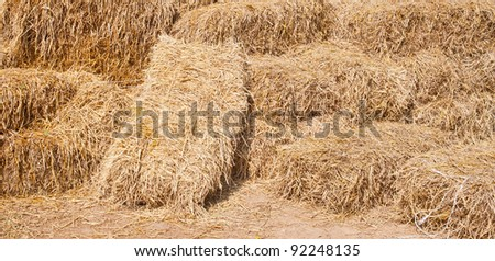 Pile of rice straw