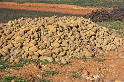 Pile of rocks removed from soil in new vineyard on Oliphants River, Western Cape, South Africa