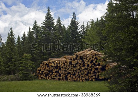 Pile of sawed wood in Dolomites, Italy.