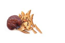 Pile of slice Lingzhi mushroom on white background (Ganoderma Lucidum). Chinese traditional medicine and nutritive value.