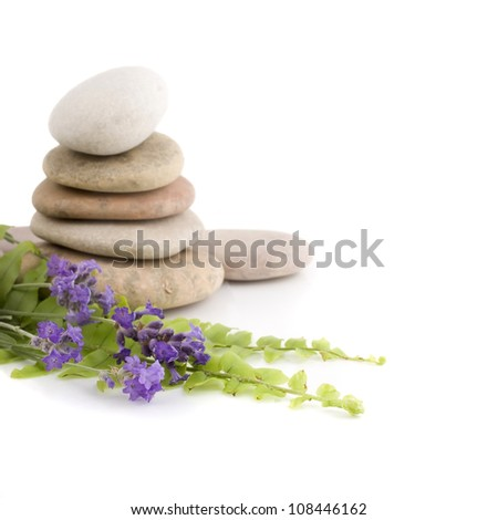 Pile of stones with lavender flowers isolated on a white background