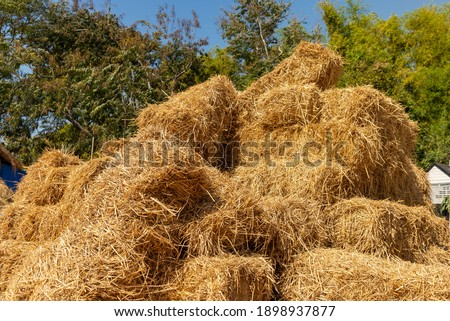 Pile of straw, Stack of straw texture image, Dry baled hay bales stack, rural countryside straw,  nature background. Foto stock ©