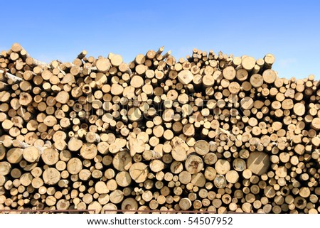 pile of timber logs