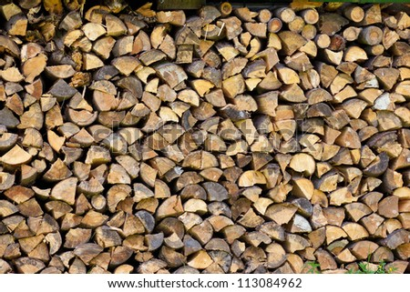 Pile of  tree logs prepare for fire