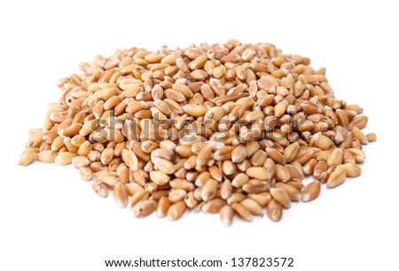 Pile of wheat berries isolated on studio