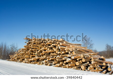Pile of wooden logs in winter