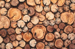 pile stacked natural sawn wooden logs background, top view