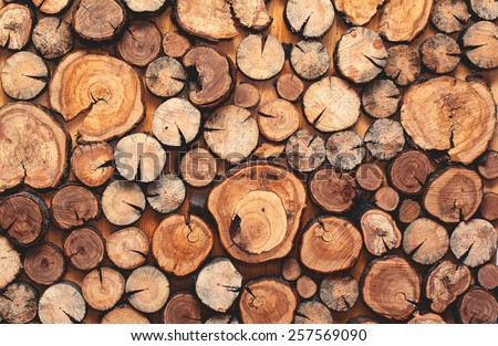 pile stacked natural sawn wooden logs background, top view ストックフォト ©