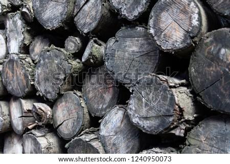 Piled Timber, Timber Logs