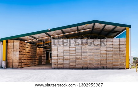 Piles of crates in agricultural building in Te Puke, New Zealand. Stockfoto ©