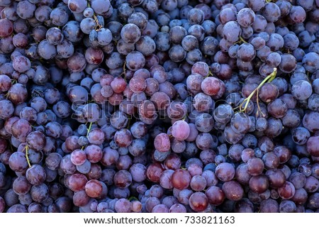 Piles of delicious fresh juicy seedless red grapes background in city fruit market, Athens, Greece