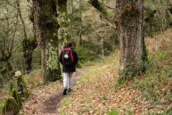 Pilgrim brunette woman, with ponytail, a black and red backpack with a hanging shell, doing the Camino de Santiago, in a trail surrounded by trees. Way of St James