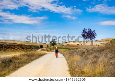 Pilgrim Walking in a Panoramic View of the Meseta toward the Town Hornillos on the Way of St James - Camino de Santiago Foto d'archivio ©