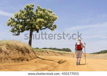 Shutterstock pilgrims near Astorga , Way of St James,  Camino de  Santiago, to Compostela, Leon, Spain