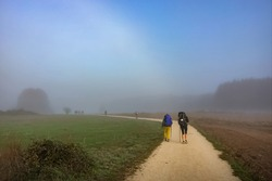 Pilgrims Walking in Morning Fog outside Sarria on the Way of St James Pilgrim Trail Camino de Santiago