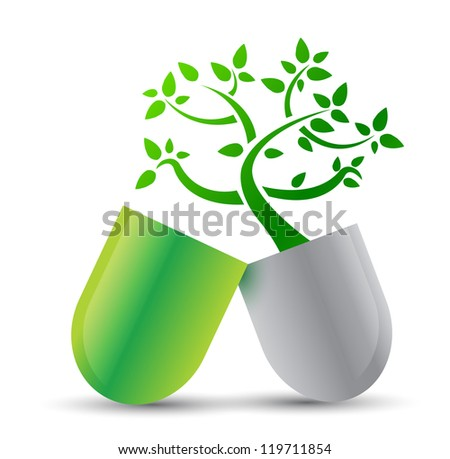 pill with nature ingredients illustration design over white