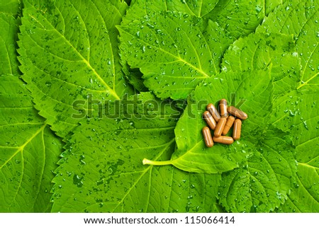 Pills over green leaves. Homeopathic medicine. Healthy vitamins
