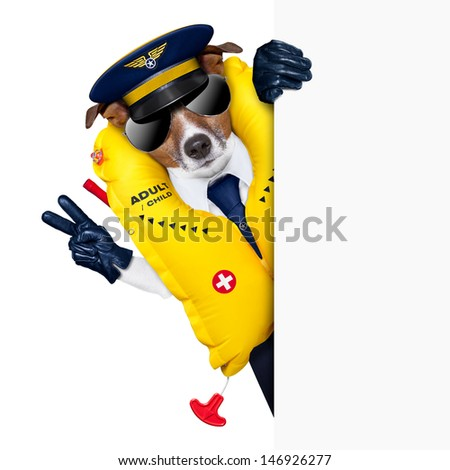 pilot captain dog wearing  emergency life vest behind a placard with peace fingers