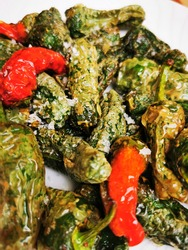 Pimientos del padron dish closeup with red and green peppers