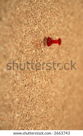 Pin in cork board