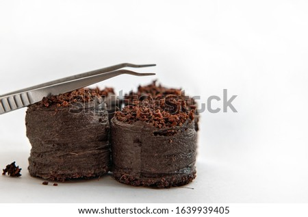 Pincet lies on peat tablets and is ready to plant seeds Zdjęcia stock ©