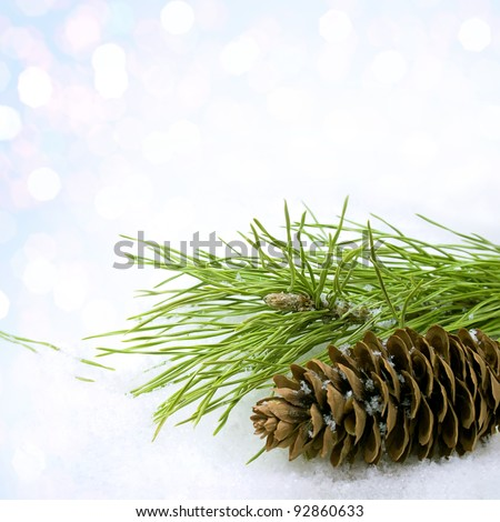 Pine branch and pine cone in snow