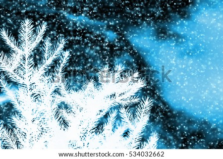 Pine branch blue sky with snowflakes. Abstract Christmas background #534032662