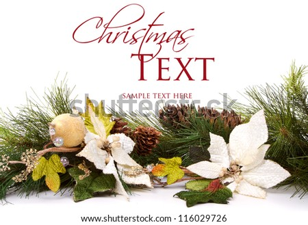 Pine branches and Christmas flowers on white