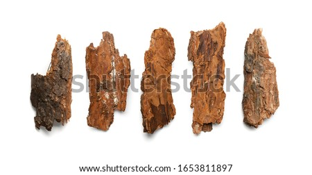 Photo of  Pine, Cedar or Oak Tree Bark Pieces Isolated on White Background. Natural Broken Wooden Garden Mulch Chips Top View