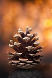 Pine cone against soft defocused background. Christmas decoration.