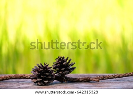 pine cone on wooden table with blurred green nature background. #642315328