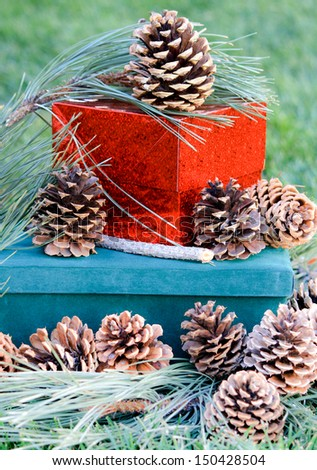 Pine Cones and Gifts Pine cones and fresh long needle pine branches covering boxes.  The boxes are red metallic and green suede.  The background is green.