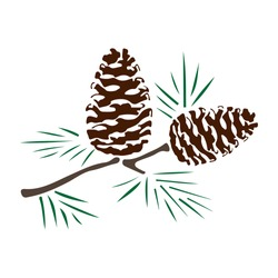pine cones branch silhouette color
