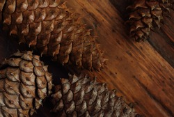 Pine cones on rustic, dark wood background.  Low key still life with directional, natural lighting for effect.  Macro with shallow dof.