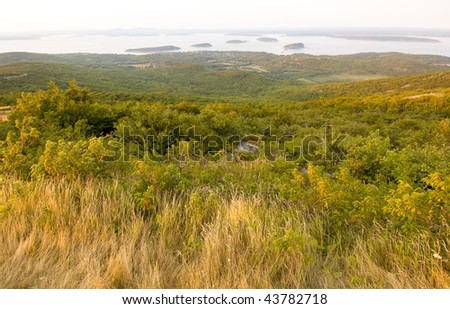 pine forest and Bar Harbor atlantic coastal islands from the summit of Cadillac Mountain