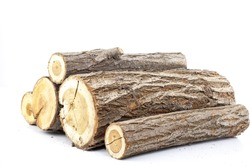 Pine logs on white background. Studio photo. Split wood. Oak tree for winter time heating. Cross section of tree trunk.Firewood ready for burning in winter season.