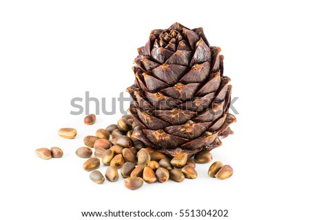 Pine nuts and ripe pine cone on a white background #551304202
