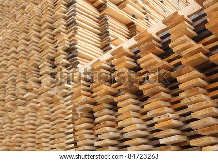 Pine planks stacked for drying at a timber yard.