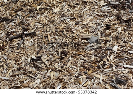 pine timber wood chip background texture