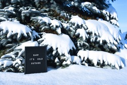 Pine tree covered with deep snow in the backgrounds and letter board with words