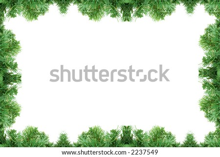 Pine tree frame isolated on a white background