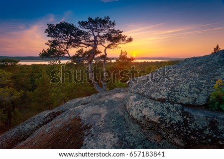 Pine trees against dramatic sunset sky on a rocky mountains hill. #657183841