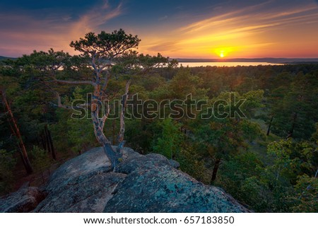 Pine trees against dramatic sunset sky on a rocky mountains hill. #657183850